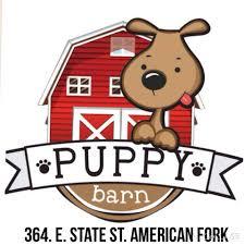 puppy thanksgiving barn