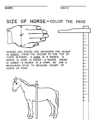 test your observation in the horse stable can you find all the