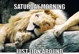 Saturday Meme - saturday morning meme time steemit