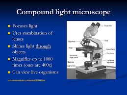 compound light microscope uses microscopes ppt video online download