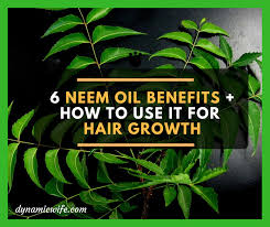 for hair 6 science backed benefits of neem for hair growth how to use it