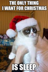 Grumpy Cat Sleep Meme - grumpy cat christmas meme imgflip