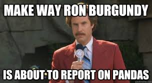 Ron Burgundy Memes - make way ron burgundy is about to report on pandas ron burgundy