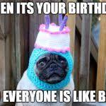 Birthday Pug Meme - birthday pug meme generator imgflip