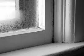 Double Pane Window Repair Window Repair Vs Replacement For Broken Seals