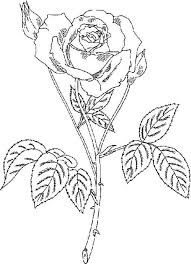 rose with thorn coloring page download u0026 print online coloring