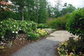 Botanical Garden Chapel Hill by The Principal Undergardener