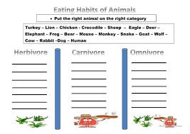 omnivore herbivore carnivore worksheet fioradesignstudio