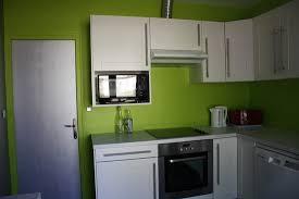 cuisine mur et gris cuisine gris et vert