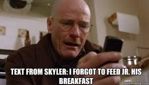 Skyler Meme - feeling meme ish breaking bad tv galleries paste