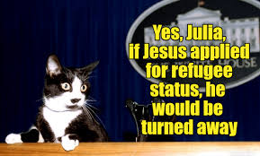 Jesus Cat Meme - lolcats jesus lol at funny cat memes funny cat pictures with