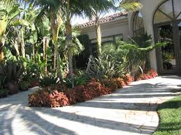 Tropical Landscaping Ideas by 50 Best Tropical Landscaping Ideas Images On Pinterest