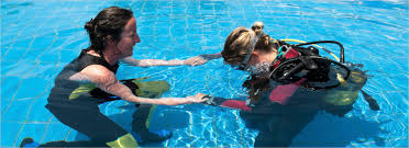 instructors course scuba dive courses cape town