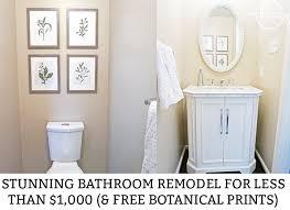 Free Bathroom Makeover - how to remodel a bathroom for under 1 000 u0026 free botanical