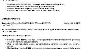 bartender resumes samples bartending resume skills job templates     bartenders bartenders
