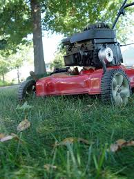 the right way to mow garden housecalls