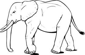 bold idea coloring page of elephant little baby colouring