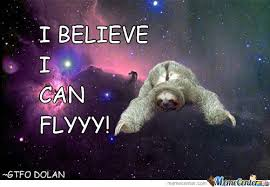Sloth Asthma Meme - sloth believes he can fly by jafet meme center