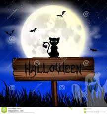 halloween night wallpaper with cat and full moon stock