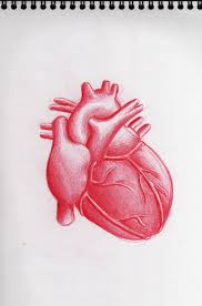 pencil sketches heart best tattoo designs