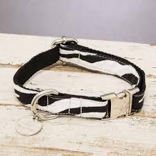 zebra print desk accessories the portobello zebra print dog collar by percy and co