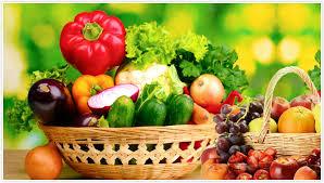 chambre froide pour fruits et l馮umes refrigeration industrielle et froid commercial en tunisie