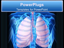powerpoint design lungs powerpoint template human anatomy with lungs over green background
