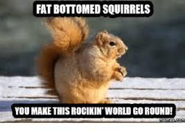 Squirrel Meme - 25 best memes about fat squirrel meme fat squirrel memes