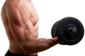 how to increase arm and chest size fast livestrong com