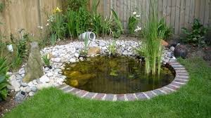 using pond liner or using hard molded or concrete is best for koi