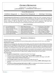 sales resume example executive resume template 31 free word pdf indesign documents regional sales resume example