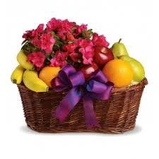 send a fruit basket send gifts to kala plant and fruit basket uganda