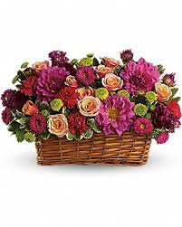 norristown florist flower delivery by plaza flowers