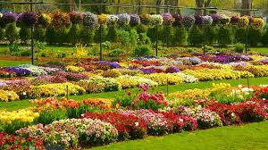 Dallas Arboretum And Botanical Garden Visit Dallas Arboretum And Botanical Garden In Dallas Expedia