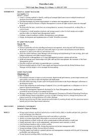 sle resume templates accountant trailers plus lodi asset manager resume sles velvet jobs