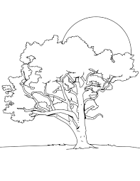 tree coloring pages for kids to print free and paint