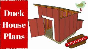 17 best ideas about duck best duck house design new opulent design 11 duck house designs 17