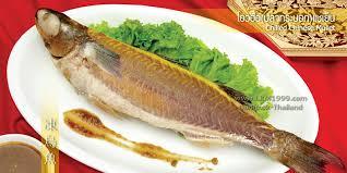 fish cuisine fish ปลาทะเล ภ ตตาคารล มกวงเม ง