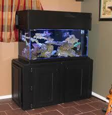 aquarium furniture makes a splash at jordans in aquarium design
