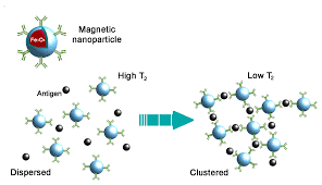 viruses free full text applicability of metal nanoparticles in