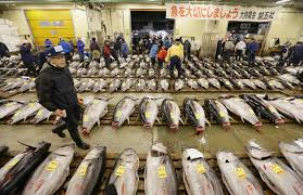 Japanese Fish Flag New Documentary On Tsukiji Fish Market Captures Essence Of