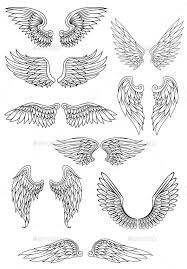 wings wings and