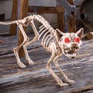 Skeleton Dog Decoration Posable Skeleton Dog Halloween Decoration From Collections Etc