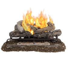 Gas Logs For Fireplace Ventless - gas logs fireplace logs the home depot