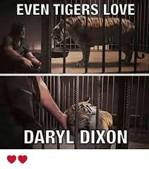 Daryl Dixon Memes - even tigers love daryl dixon love meme on me me