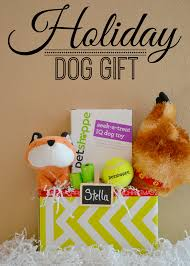 mommy testers last minute christmas gifts for dogs
