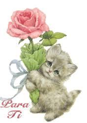 imagenes de amor con rosas animadas imágenes animados de amor para descargar