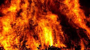 Wildfire Weed by Firefighters Stumble Upon Marijuana Grow U2013 Kobi Tv Nbc5 Koti Tv Nbc2