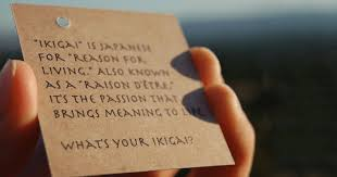 ikigai finding your reason for being flowssom