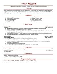 Resume Samples Java by Well Suited It Resume Sample 13 It Cv Template Library Technology